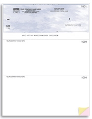 W9209 - Laser Top Cheques