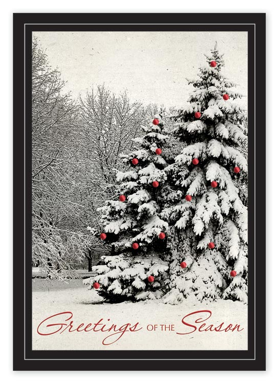 Custom printed holiday card with 2 snow-covered trees in the forest.