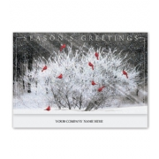 Holiday Christmas Cards- Cardinal Calling