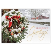 Snowy Delight Holiday Cards